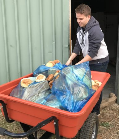 Food waste for processing in Canberra